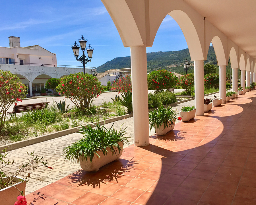 exterior-vistas-patio