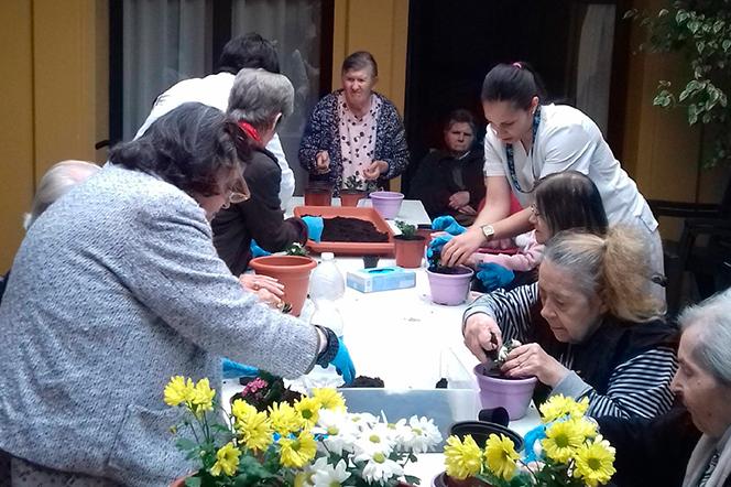 Actividades Seniors Residencias